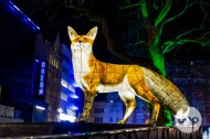 Lumiere London Highlights-31